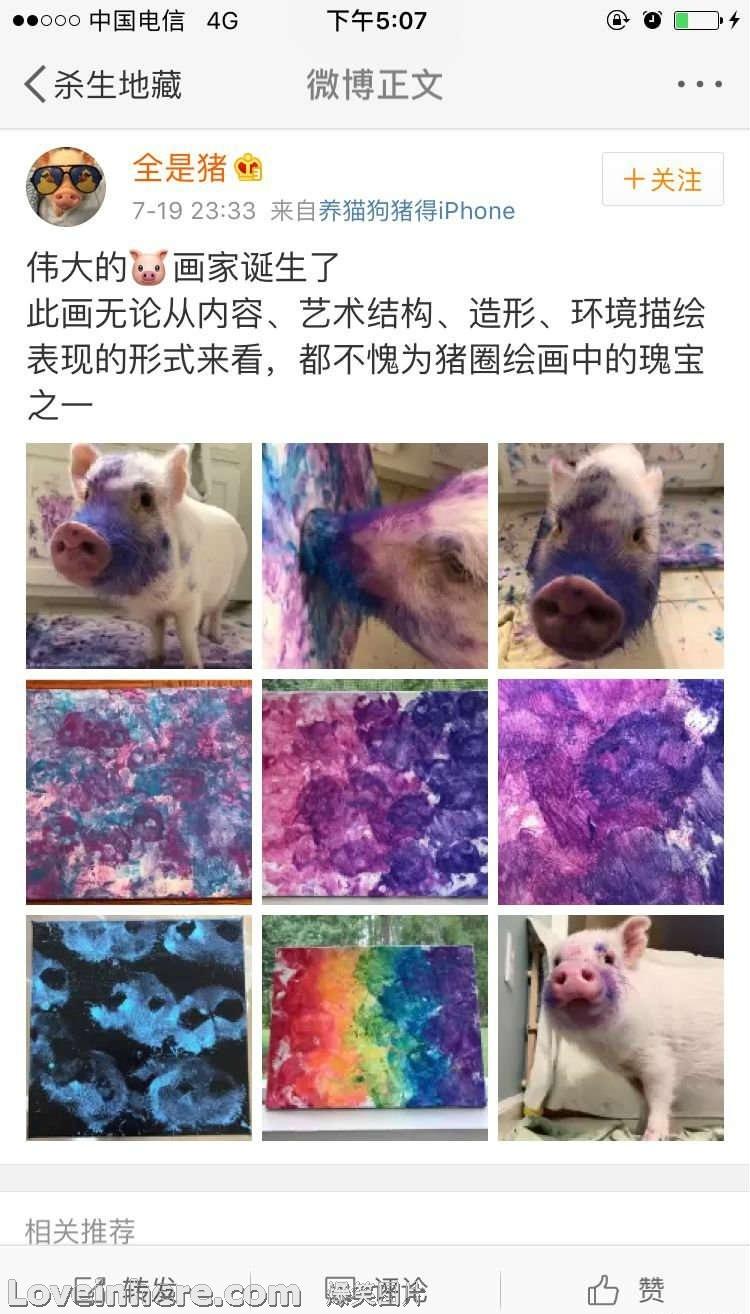 连猪都不如了……这画的
