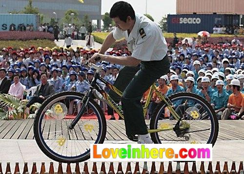 猴子骑牛图片_骑自行车的高手